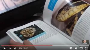 livro-sobre-cobras-serpentes